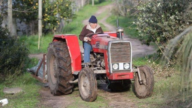 José Mujica se aposentou no Senado para se dedicar mais a sua fazenda (Foto: EPA via BBC News Brasil)