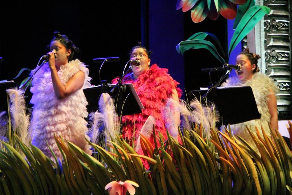 """Figurino diferenciado foi usado por membros do espetáculo """"bjÖrkCA"""" (Foto: Rickardo Marques/G1 AM)"""