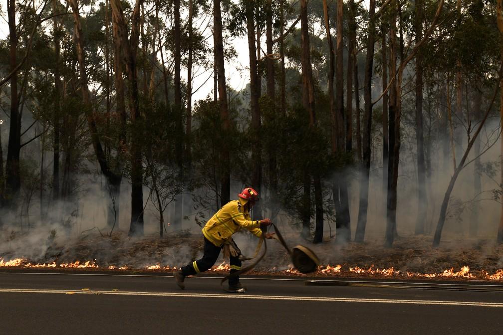 5 de janeiro - Um bombeiro trabalha para cnter um pequeno incêndio florestal que fechou a estrada Princes no sul de Ulladulla, na Austrália — Foto: Dean Lewins/AAP Image via Reuters