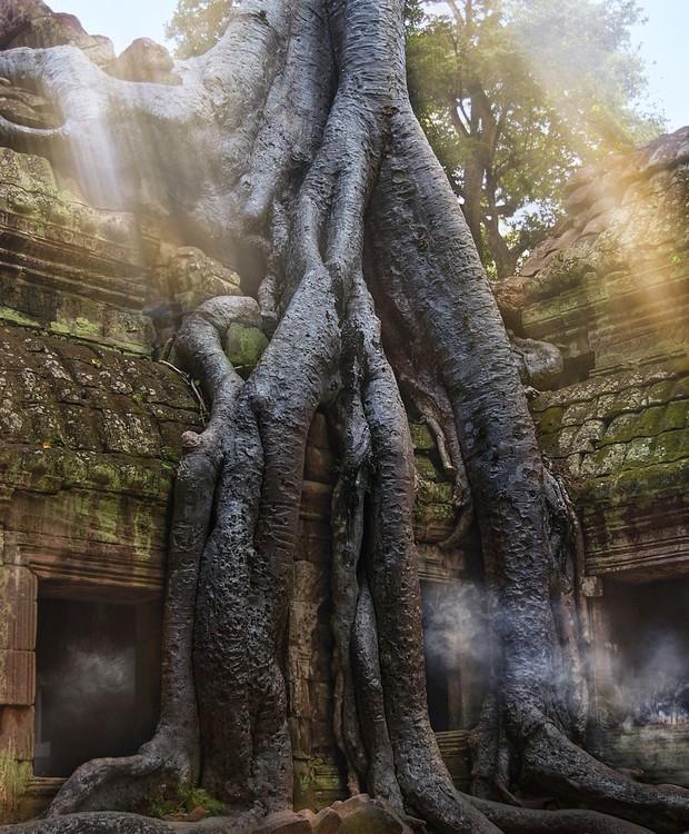 O Ta Prohm Temple dá um ar misterioso à paisagem (Foto: Getty Images/ Reprodução)