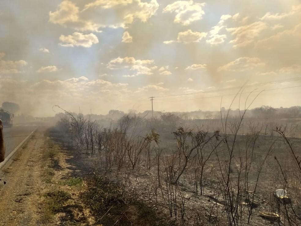 Incêndio atingiu região de mata às margens da rodovia em Felipe Guerra, RN — Foto: Amanda Melo/Inter TV Costa Branca