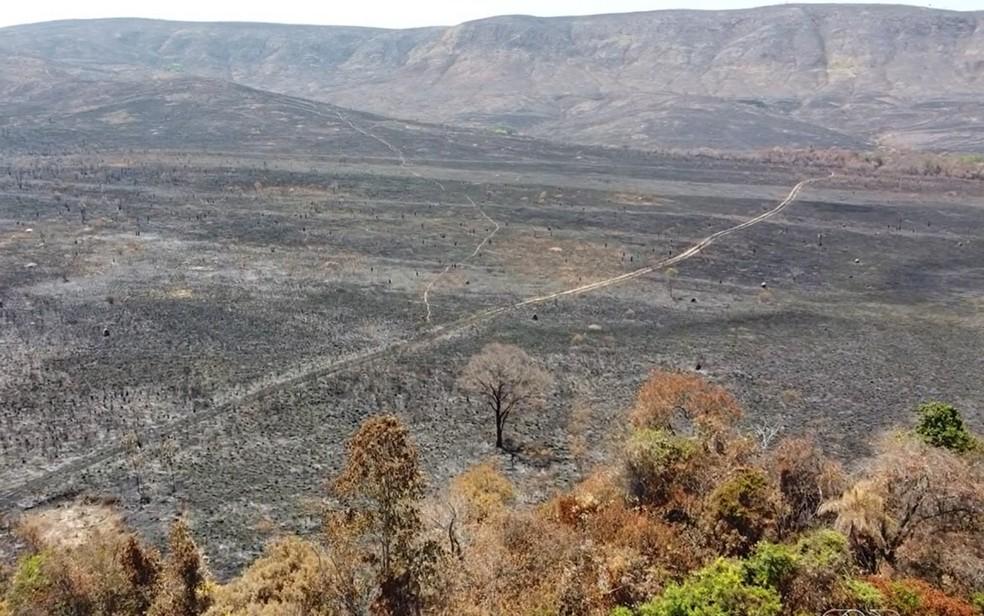 Incêndio destrói parte da Chapada dos Veadeiros em Goiás — Foto: Reprodução/TV Anhanguera