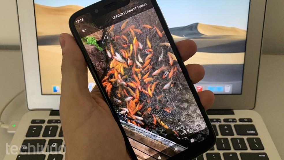 App gratuito permite usar vídeo como papel de parede no Android — Foto: Helito Beggiora/TechTudo