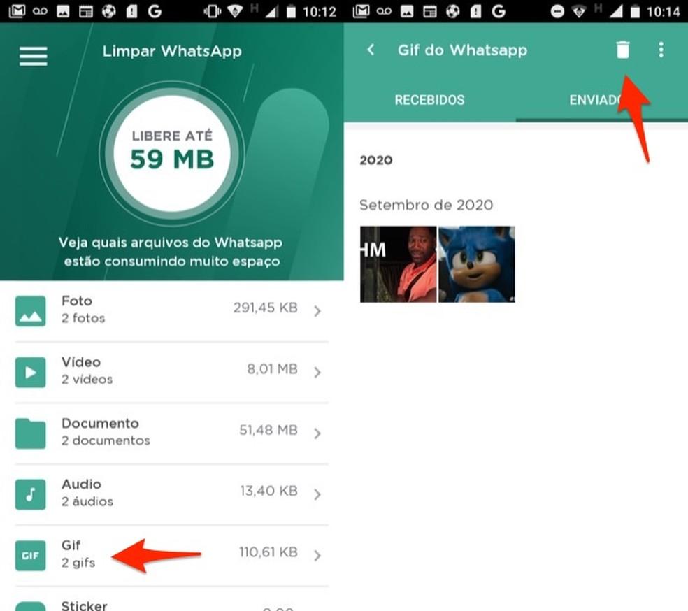 No LimpaZap é possível selecionar áudios, GIFs ou stickers para deletar do WhatsApp  — Foto: Reprodução/Marvin Costa