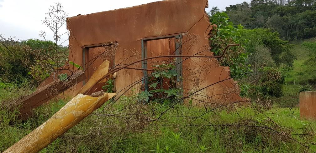 Em Paracatu de Baixo, rejeito da mineração foi encoberto por mato — Foto: Raquel Freitas/G1