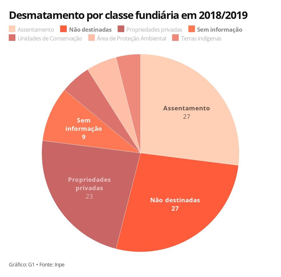 Desmatamento por classe fundiária em 2018/2019 — Foto: Carolina Dantas/G1