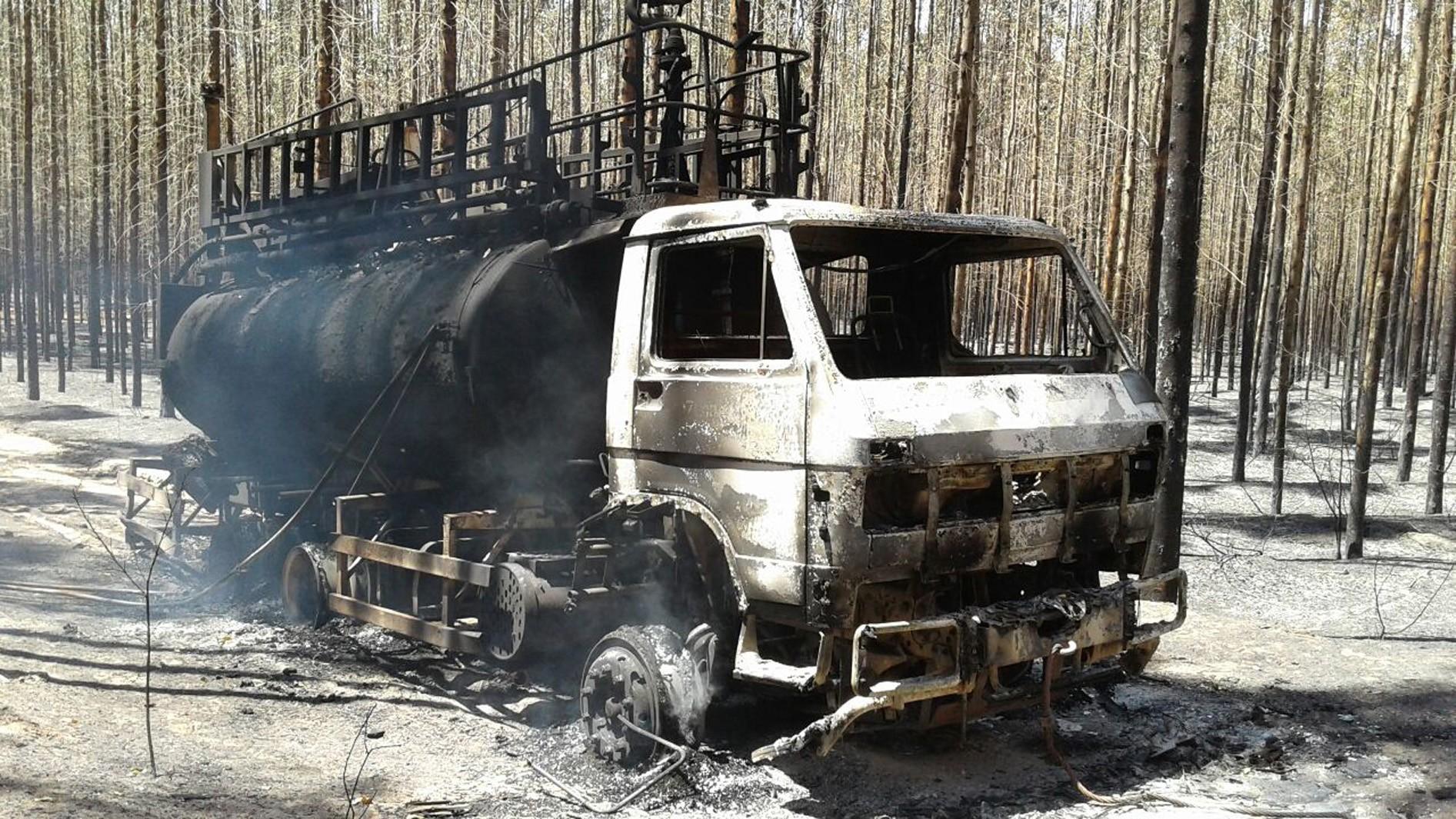 Incêndio em MS destrói 1,3 mil hectares de plantação de eucalipto e área de preservação