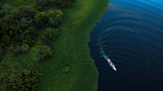 A Amazônia é destacada na pesquisa como um dos exemplos de biomas que abriga áreas de mata virgens (Foto: Getty Images via BBC)