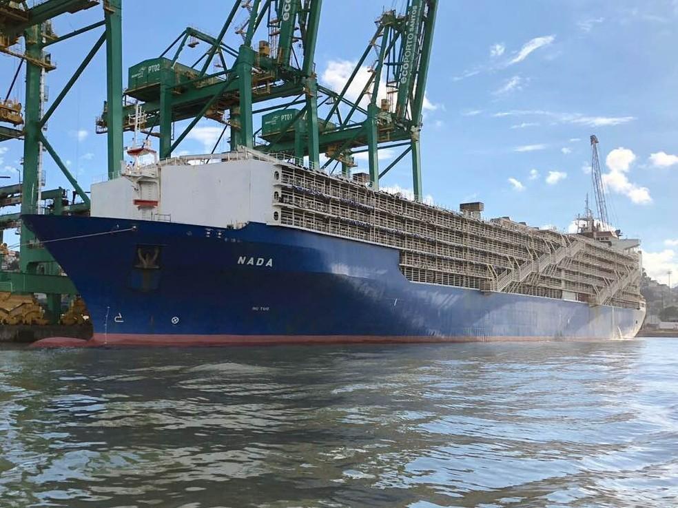 Navio Nada é o maior para bovinos em operação no mundo e ficou retido no Porto de Santos, SP (Foto: Fabio Mello Fontes/Arquivo Pessoal)