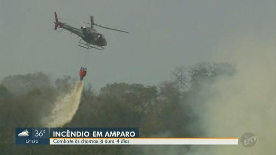 Incêndio em área de proteção ambiental de Amparo dura três dias; Defesa Civil suspeita de ato criminoso