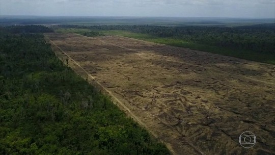 Governadores da Amazônia Legal querem negociar com europeus