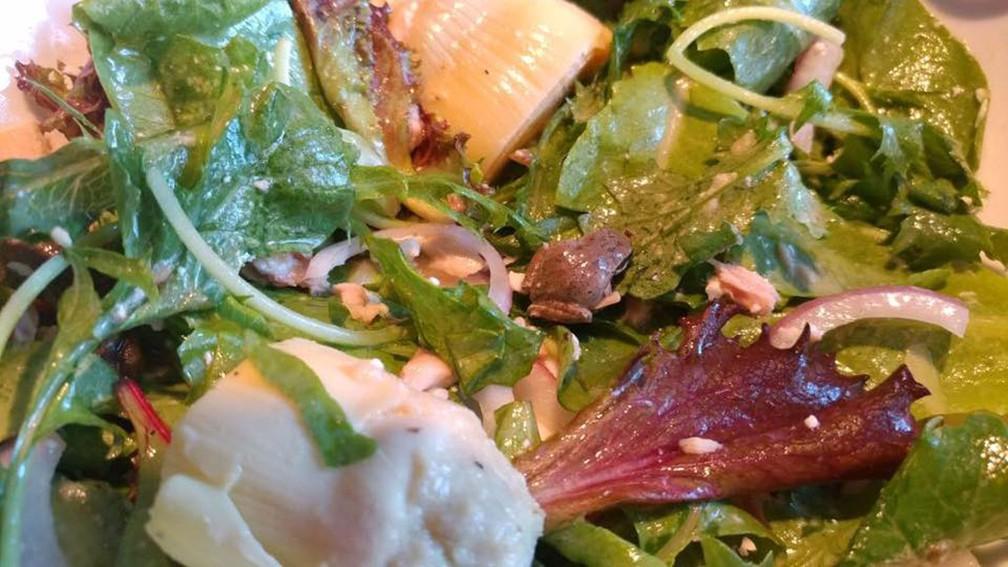 A rã Lucky na salada (Foto: Becky Garfinkel/Facebook)