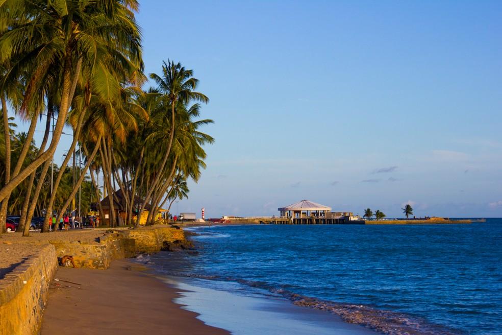 Trechos de praias de Alagoas foram analisados pelo IMA (Foto: Jonathan Lins/G1)