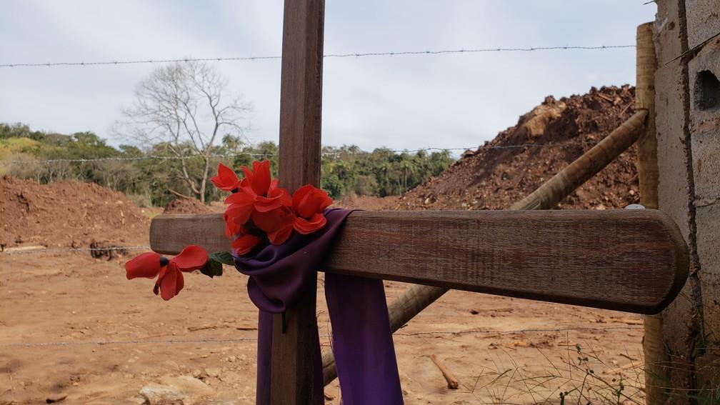 Medidas para recuperação definitiva do meio ambiente ainda não foram definidas — Foto: Raquel Freitas/G1