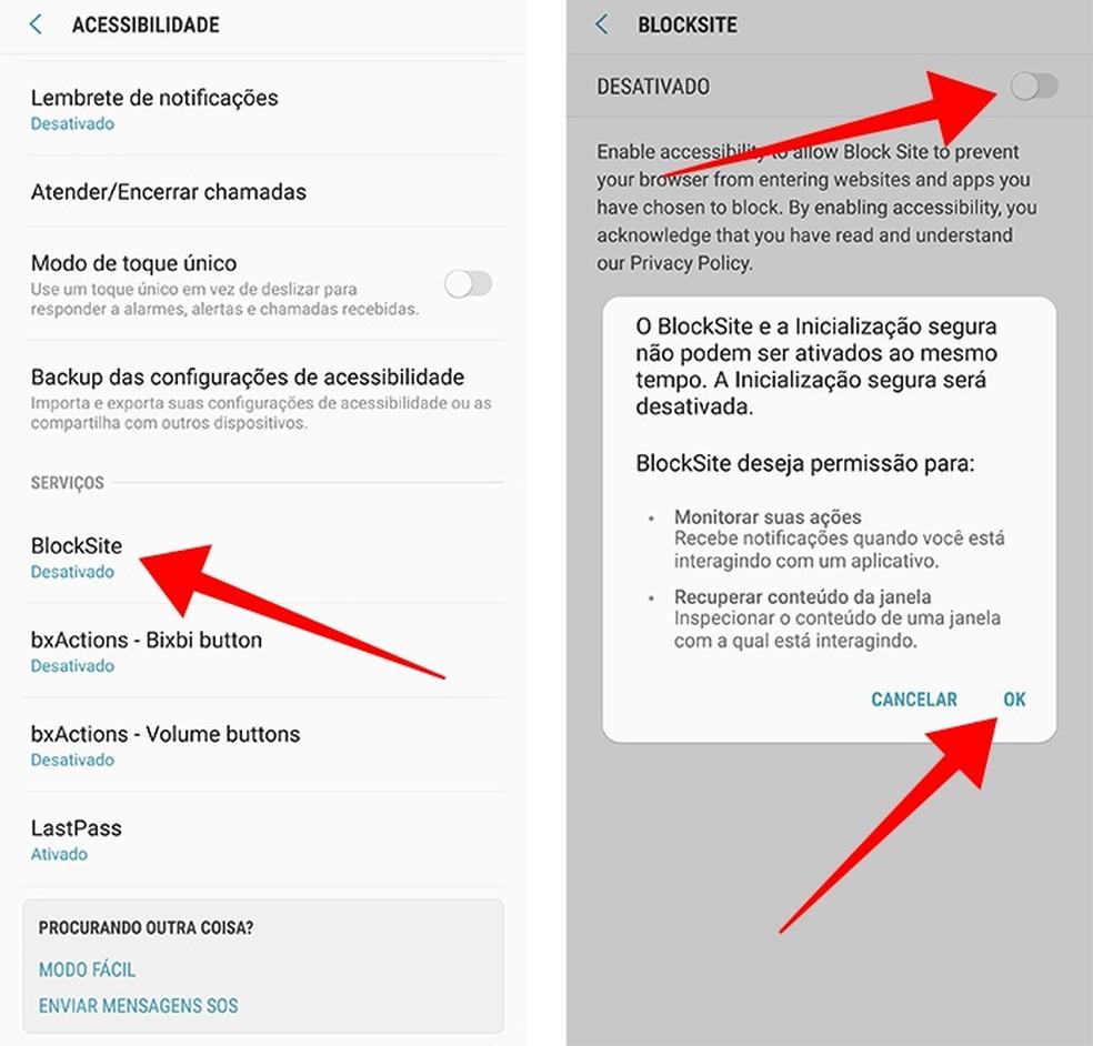 Conceda permissões de acessibilidade ao BlockSite — Foto: Reprodução/Paulo Alves