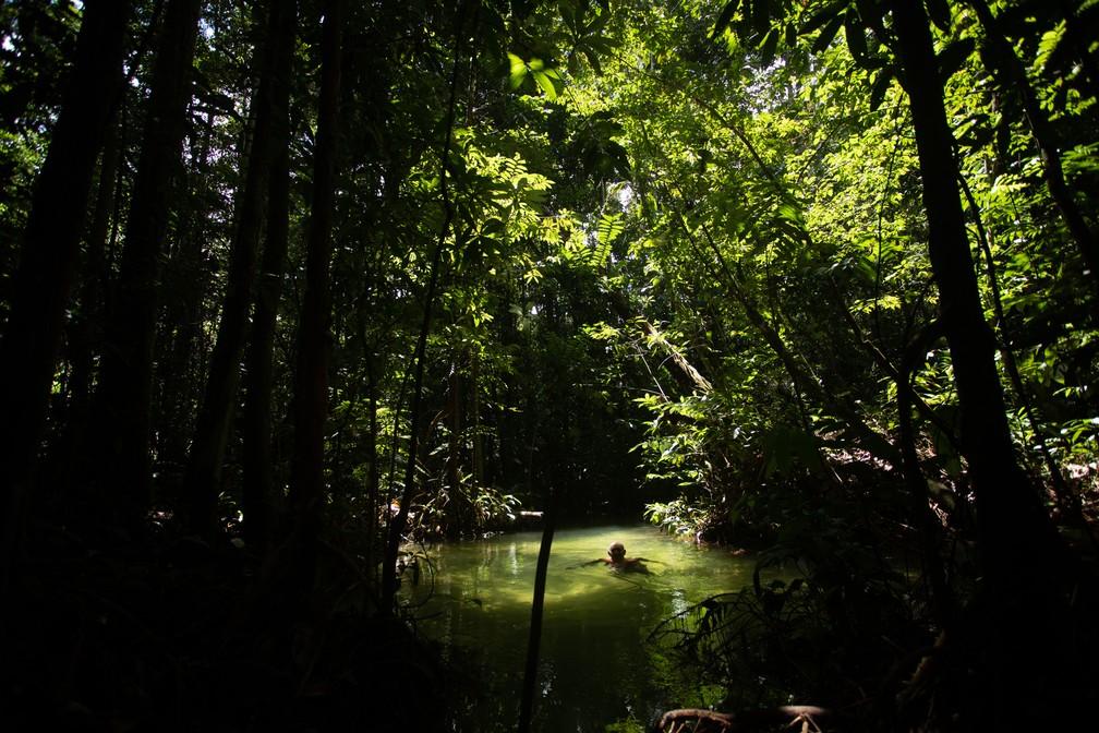 Um homem nada no igarapé da comunidade Jamaraquá, na Floresta Nacional do Tapajós — Foto: Marcelo Brandt/G1