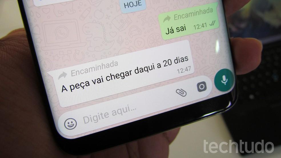 WhatsApp mostra quando mensagem foi encaminhada (Foto: Paulo Alves/TechTudo)