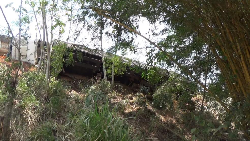 Carreta transportava bovinos em Jaru — Foto: Rede Amazônica/Reprodução