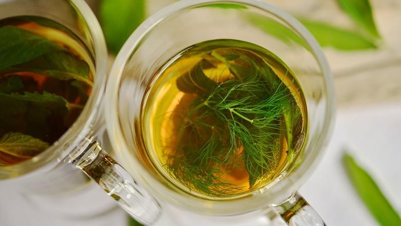 cha-erva-chas-plantas-bebida (Foto: Pixabay/CongerDesign/Creative Commons)