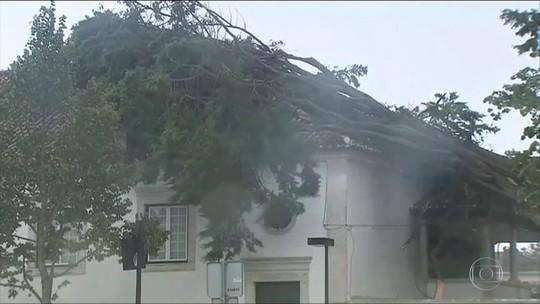 Cerca de 70 mil casas continuam sem energia em Portugal após tempestade
