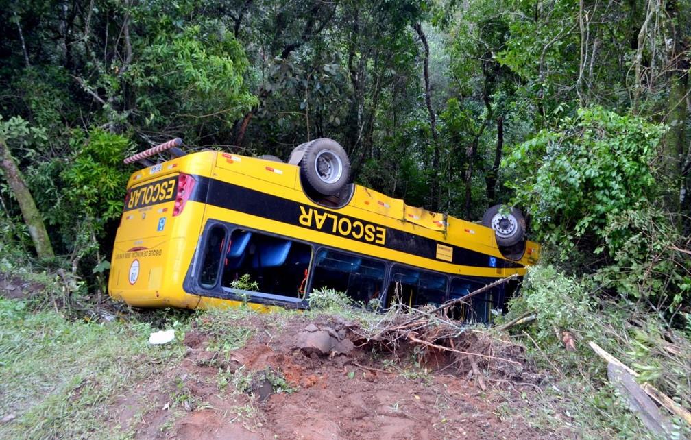 Ônibus só não desceu mais a ribanceira por causa das árvores em Delfim Moreira (Foto: Luciano Lopes)