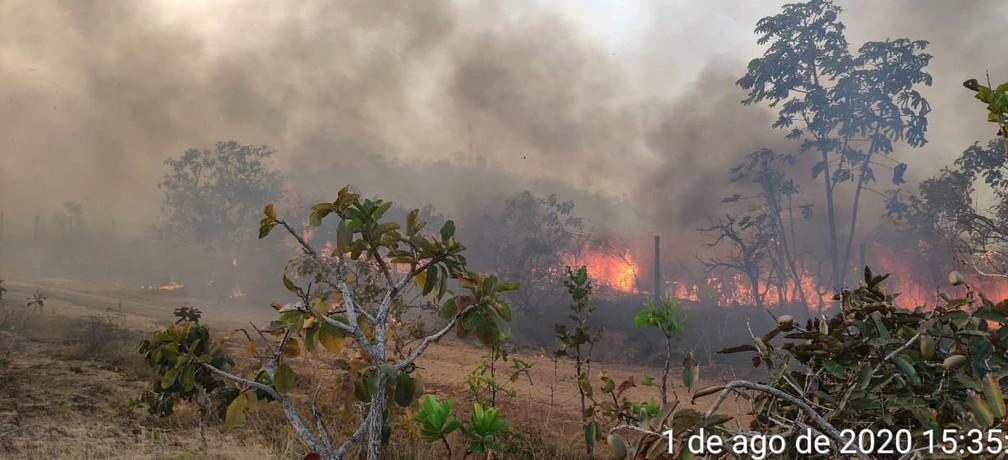 Queimada atingiu região de serrado em MT — Foto: Corpo de Bombeiros