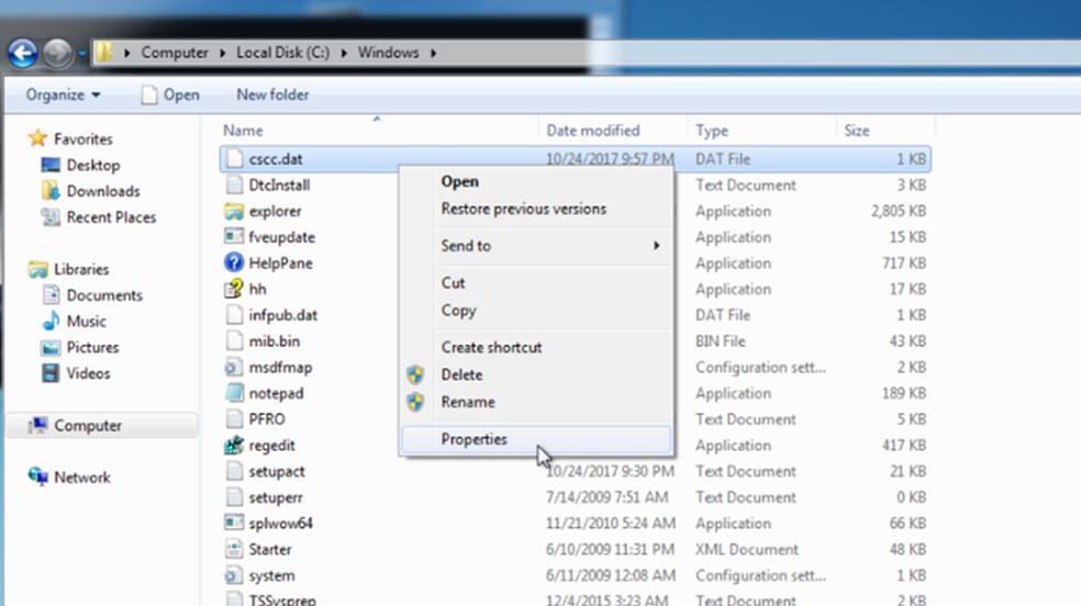 Dois arquivos DAT funcionam como vacina contra o Bad Rabbit no Windows (Foto: Reprodução/Cybereason)