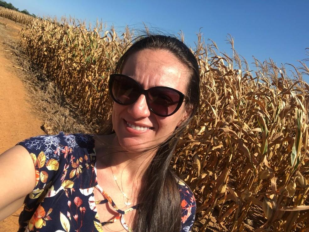 Na rotação de cultura é plantado milho, milheto para cobertura e braquiária para integração lavoura e pecuária. — Foto: Antonielly Rottoli/Arquivo pessoal