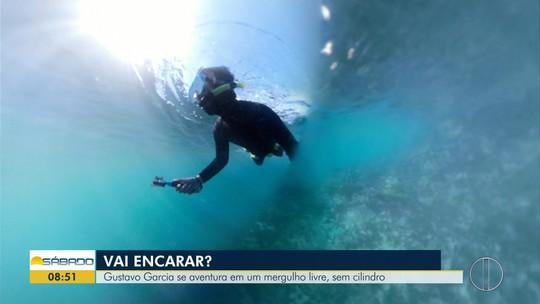 """""""Vai Encarar?"""" mostra belezas submersas de ilha paradisíaca de Cabo Frio em um mergulho sem cilindro"""