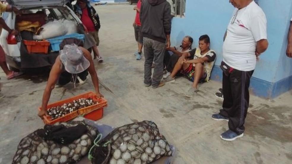 Mergulhar e pescar frutos do mar são apenas uma parte do trabalho: é preciso vendê-los (Foto: V. M. Vásquez)