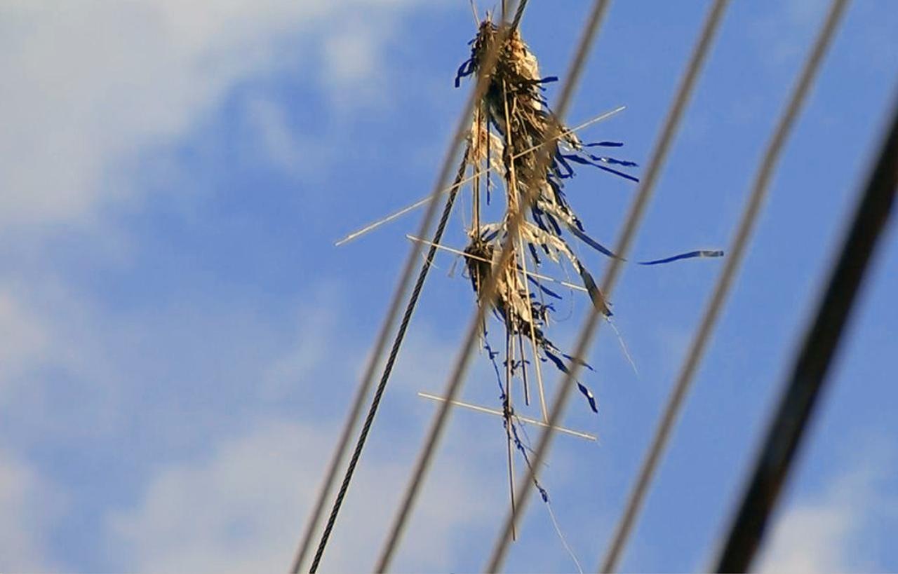 Pipas são causa de 300 acidentes com fiação elétrica em Santarém
