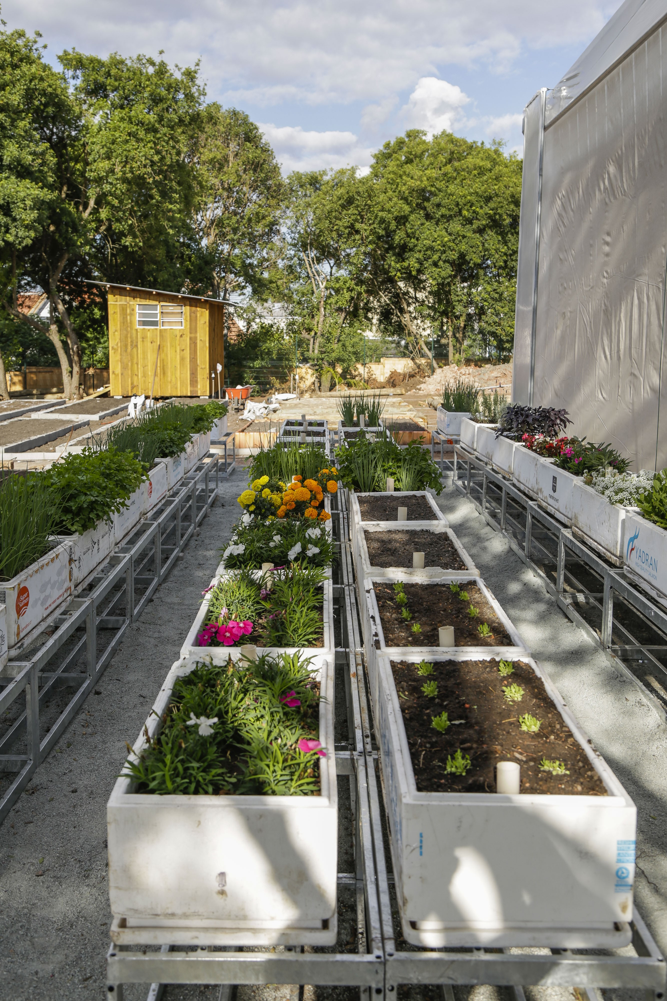 Obras da Fazenda Urbana, no Cajuru. Curitiba, 28/04/2020. Foto: Pedro Ribas/SMCS (Foto: Divulgação)