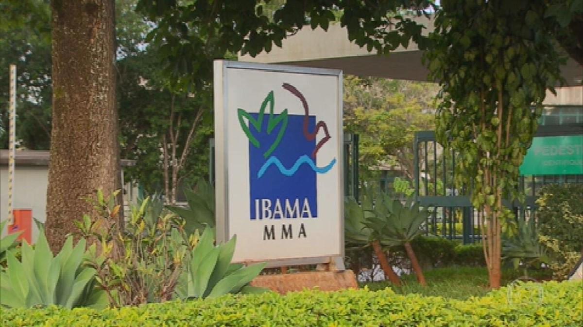 Servidores do Ibama denunciam paralisação na fiscalização após mudança na aplicação de multas