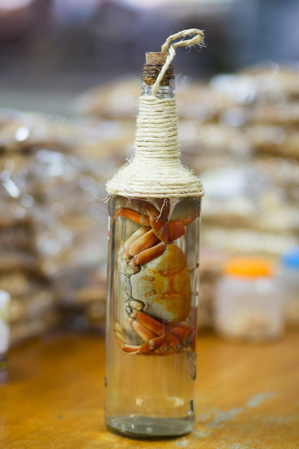 Cachaça com caranguejo é um dos itens exóticos encontrados em Fortaleza — Foto: Fernanda Siebra/Sistema Verdes Mares