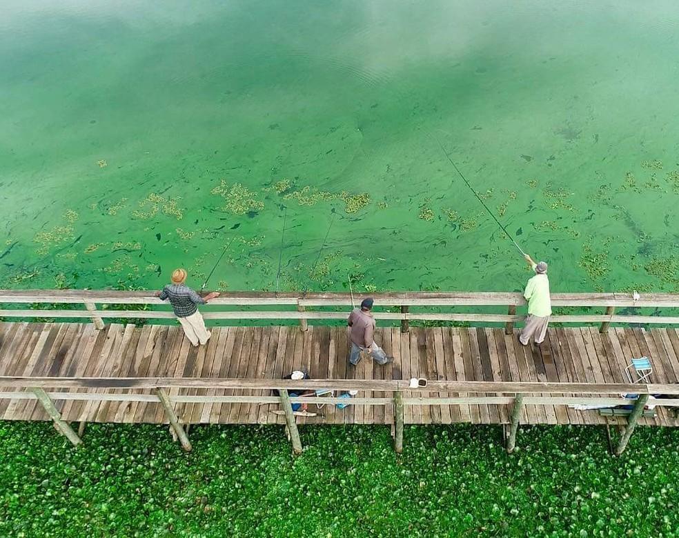 Na quinta-feira, uma mancha verde tomava conta das águas em Arealva  — Foto: Willian Silva / TV TEM