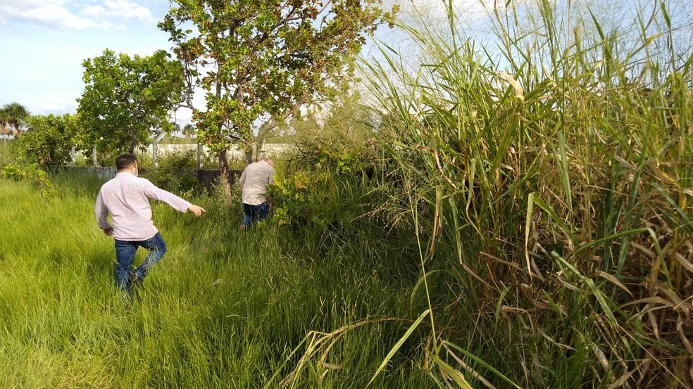 Crime aconteceu em área da mata próximo da Casai Yanomami — Foto: Divulgação/Ascom/PCRR