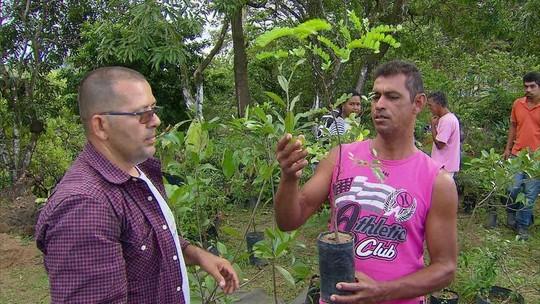 Moradores do Alto Nova Olinda recebem mudas de árvores para plantar em casa