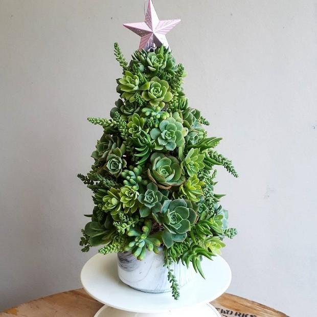 Como usar suculentas na decoração de Natal (Foto: Pinterest)