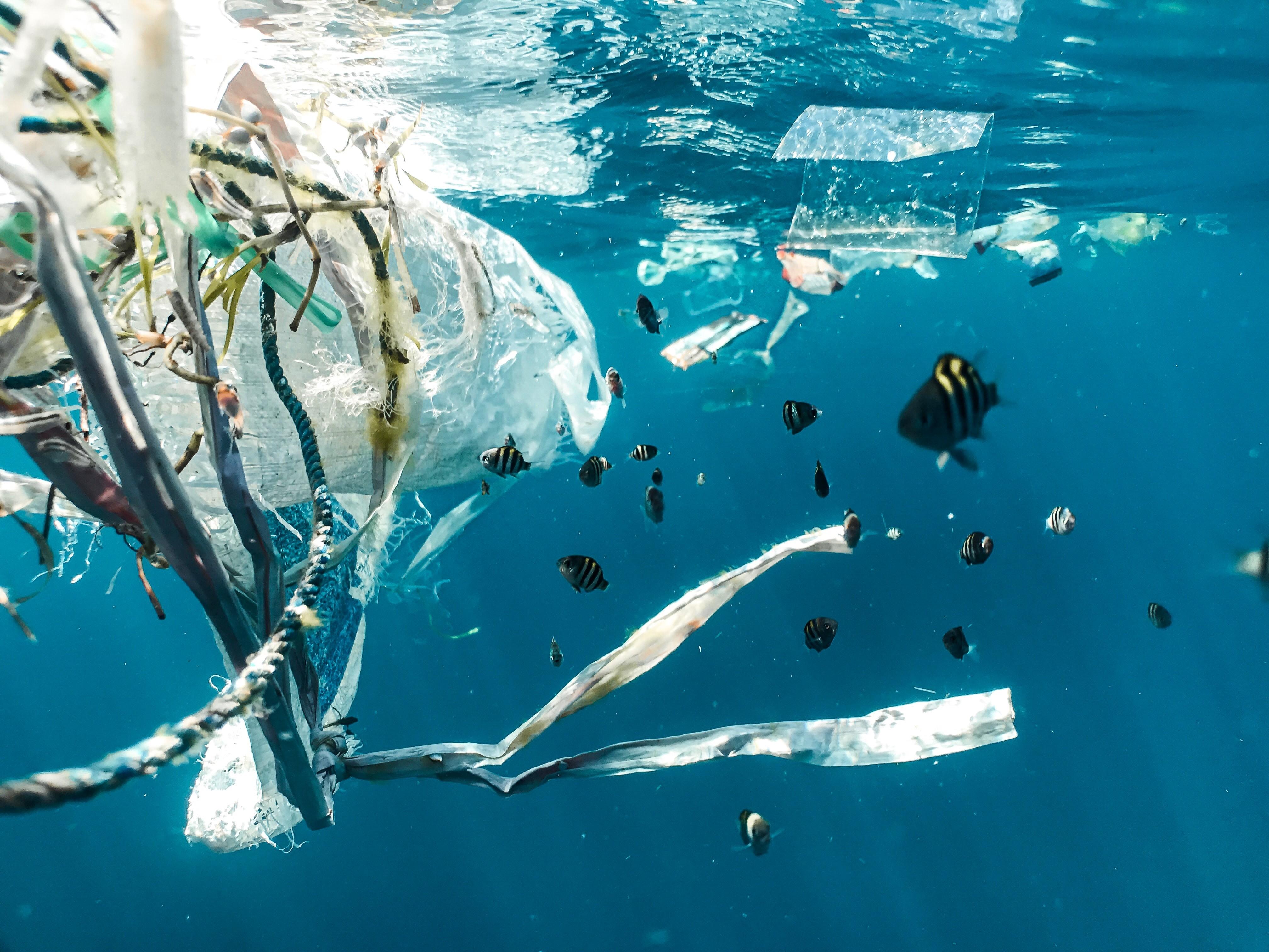 plástico no mar (Foto: Naja Bertolt Jensen via Unsplash)