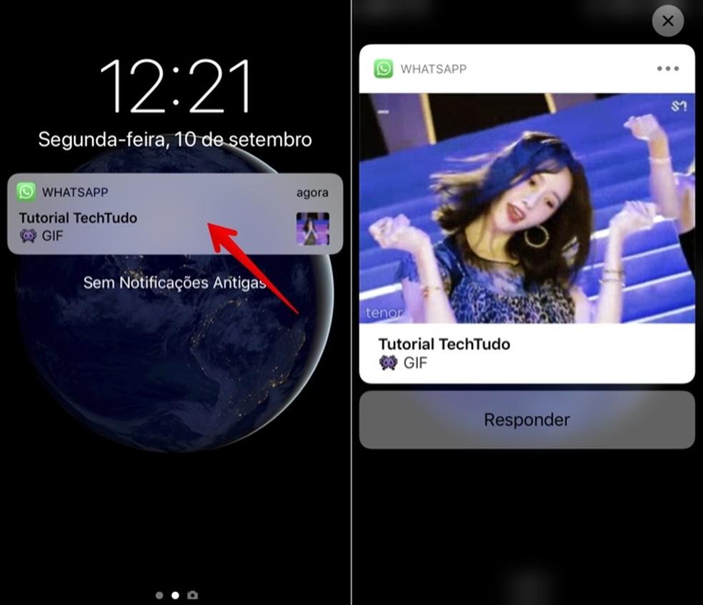 Visualizando GIF ou foto recebida no WhatsApp com o 3D Touch (Foto: Reprodução/Helito Bijora)