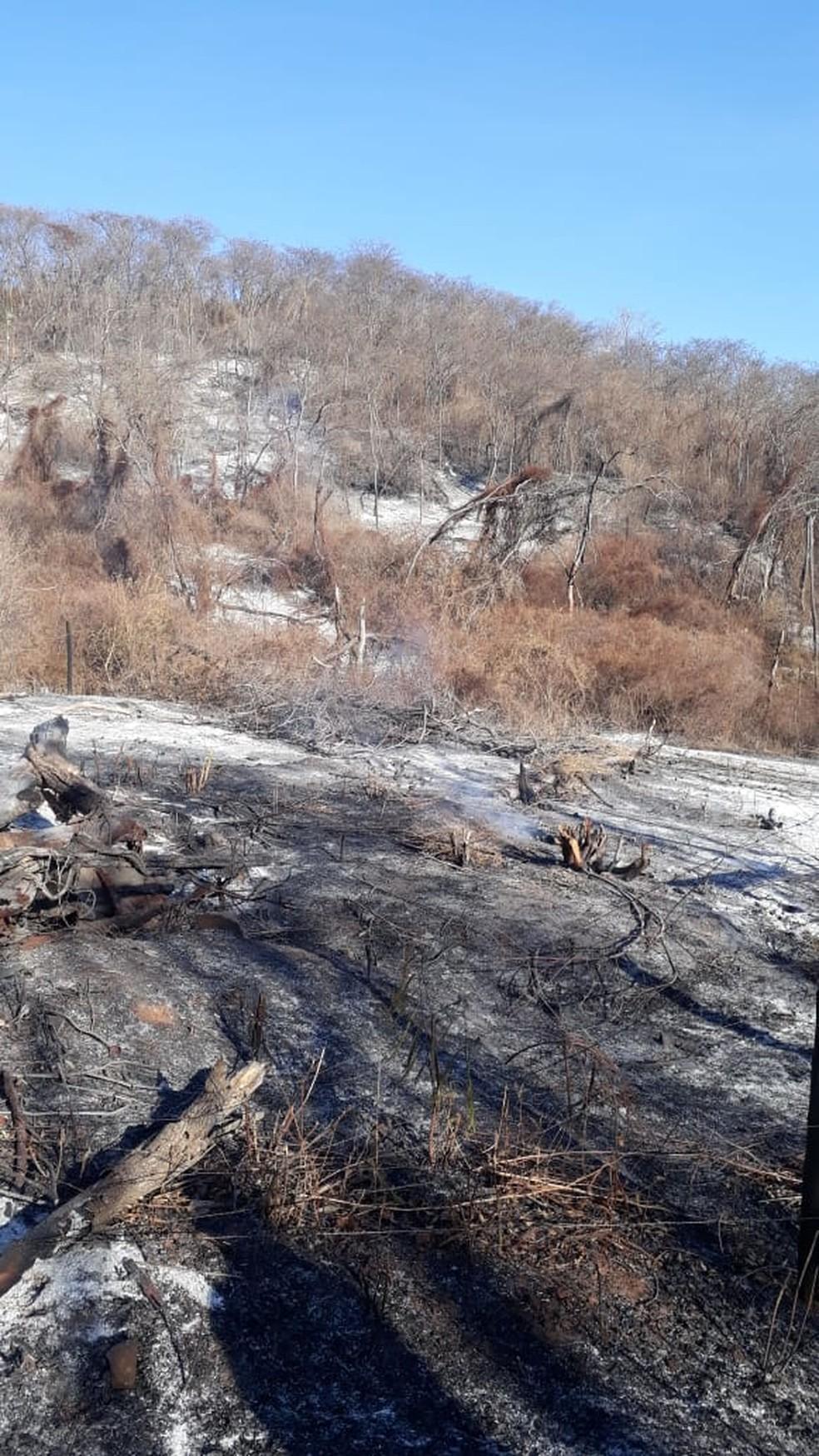 A estimativa é de que 82 hectares tenham sido atingidos pelo fogo — Foto: Corpo de Bombeiros/Divulgação