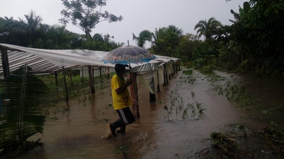 Água de represa transbordou e destruiu plantações — Foto: Divulgação/Defesa Civil de Xambioá