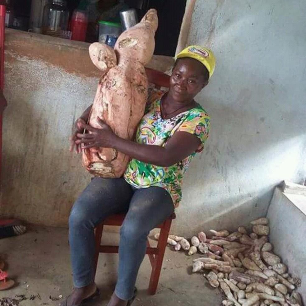 'Essa terra é maravilhosa', disse dona Lia que achou macaxeira de 20 kg e quase 1 metro de comprimento em Alagoa Grande, PB (Foto: Maria dos Anjos/Arquivo Pessoal)