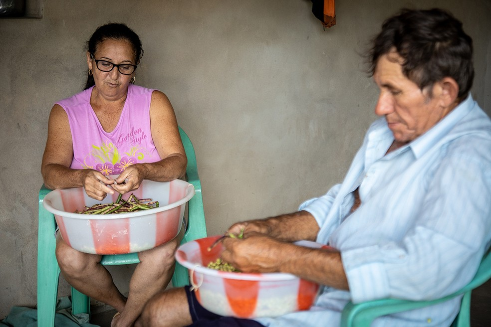Produtores rurais, dona Rita Maria de Lima, 52, e Antônio Pereira Torres, 61, devem ser beneficiados por novo programa de compra da Agricultura Familiar no RN — Foto: Sandro Menezes