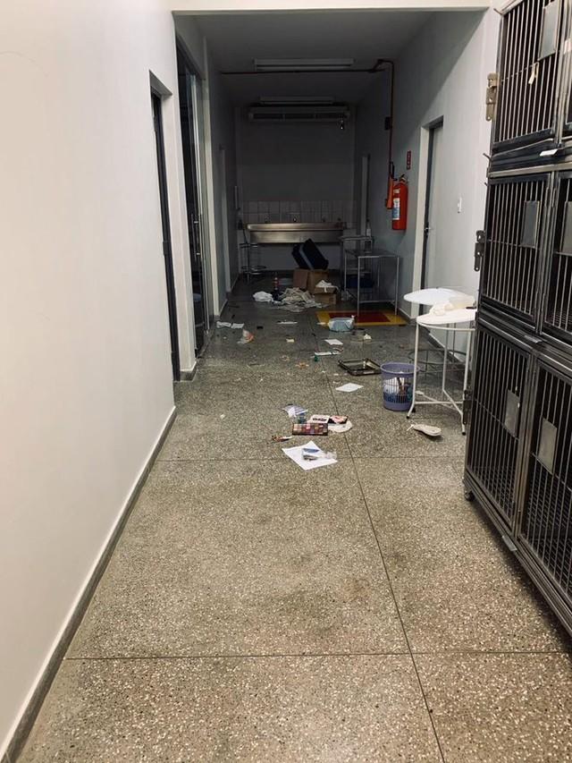 PF vai investigar o crime — Foto: Divulgação