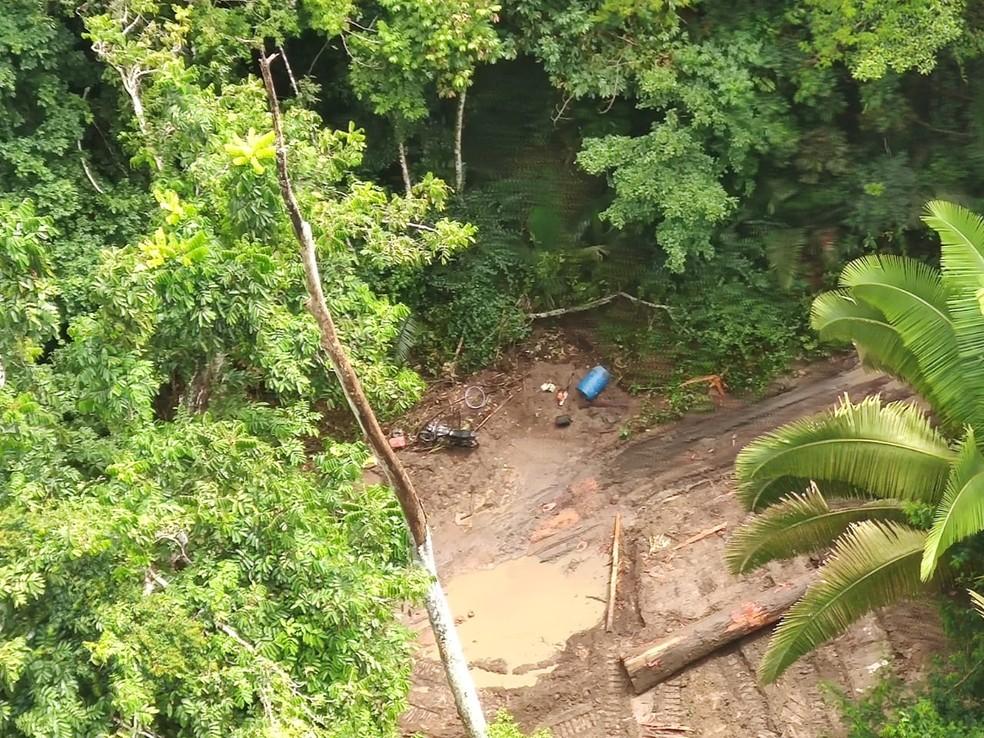 Ibama flagra extração ilegal em Terra Indígena Arara do Laranjal, no Pará — Foto: Ibama