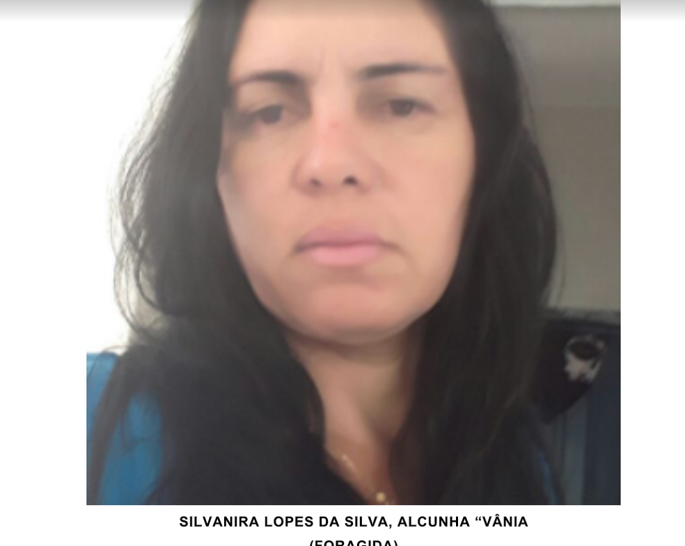 Silvanira Lopes da Silva (Foto: Polícia Civil/Divulgação)
