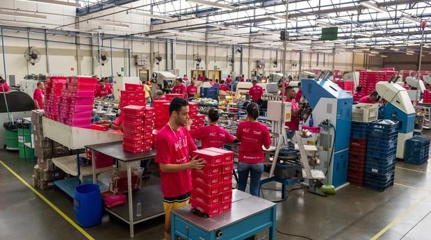 Nova fábrica da Milli (Foto: Divulgação )