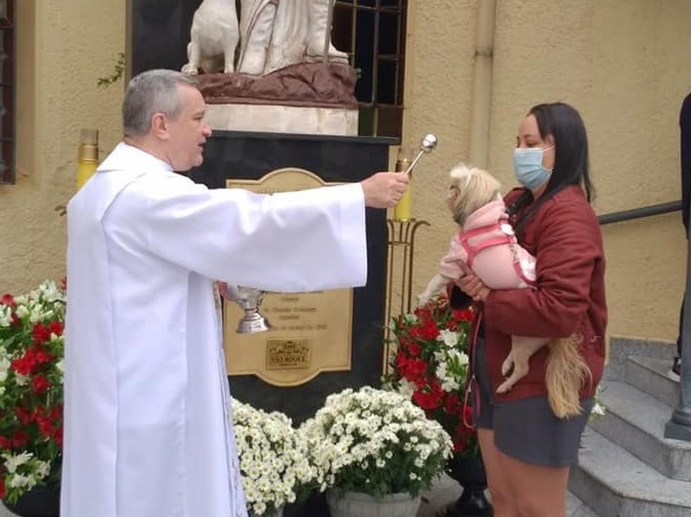 Cães recebem benção de padre em Boituva — Foto: Paróquia de São Roque/Divulgação