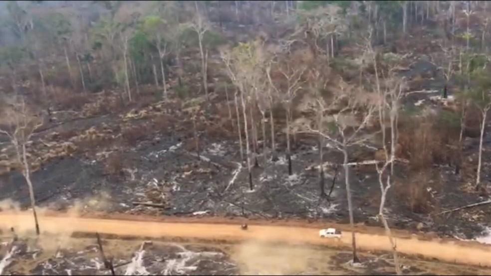 Ação na área de reserva ocorreu nesta segunda-feira (Foto: Reprodução/Rede Amazônica)